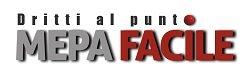 MEPAFACILE Logo