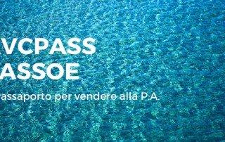 AVCPASS-PASSOE